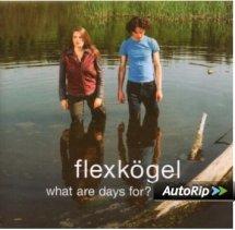 Flexkögel-What Are Days For?