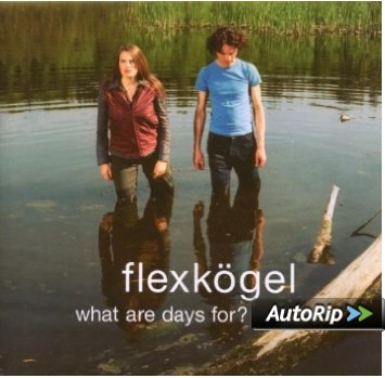 Flexkögel-What Are Days For?